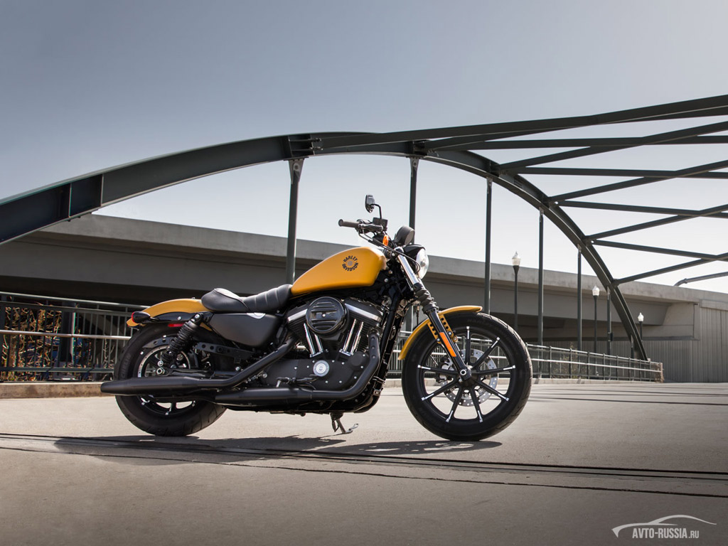 an overview of harley davidson motorcycle company